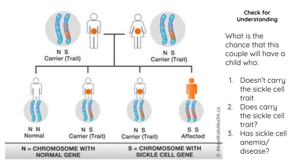 Understanding check for intro to sickle cell. Image courtesy of Nicole Clark. United States, 2020.