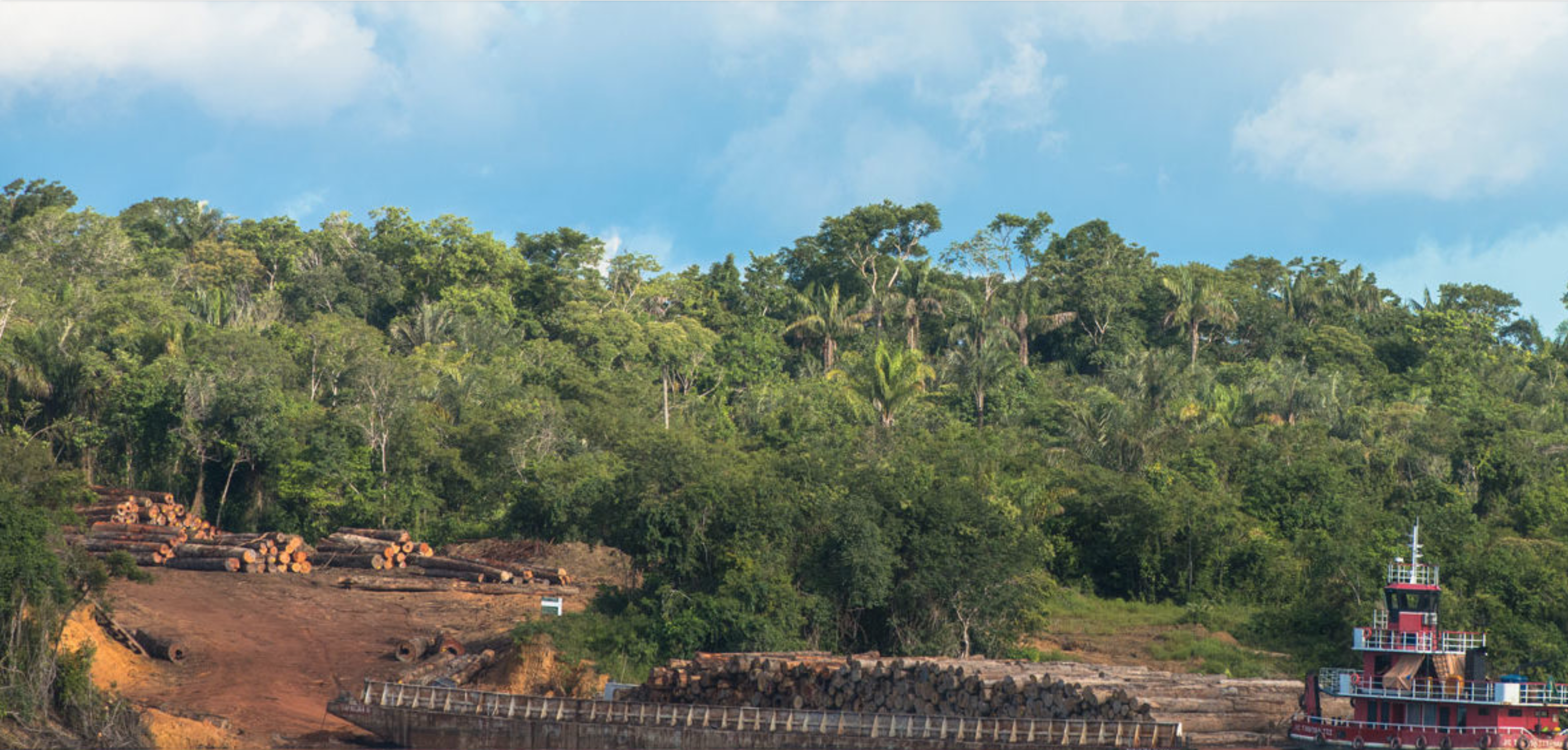 A barge laden with logs heads downriver. The Sateré fear that their ancestral lands on the Mariaquã River, mistakenly left out of the Andirá-Marau Indigenous Reserve, could be logged over by invaders. Image by Matheus Manfredini. Brazil, 2019.